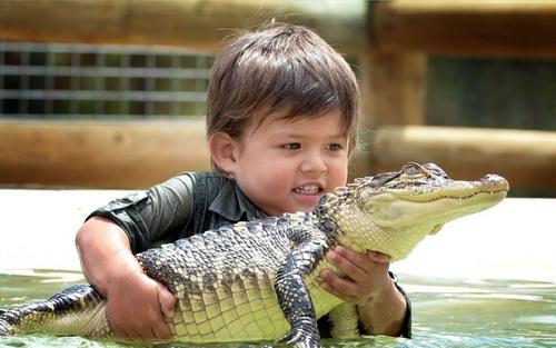 Сперма человека и сперма крокодила идентичны!