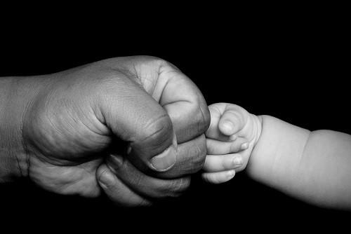 От питания мужчины зависит фертильность его будущих сыновей.