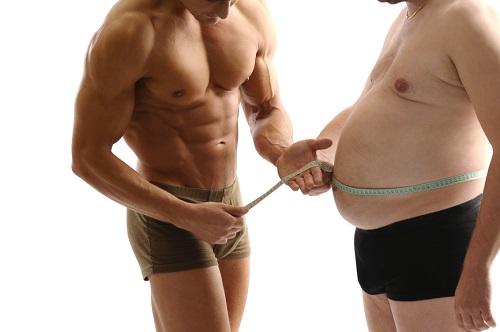 Жир или тестостерон: кто кого?