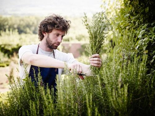 Травы для мужчин