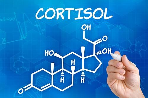 Кортизол. Сколько его должно быть?