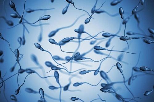 Мужская сперма.