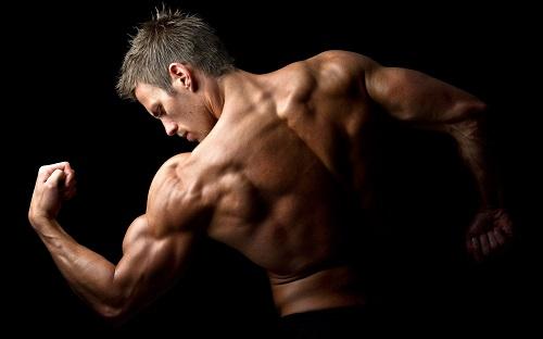 Интимные мышцы мужчины.