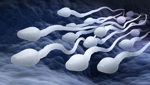 Сперма.