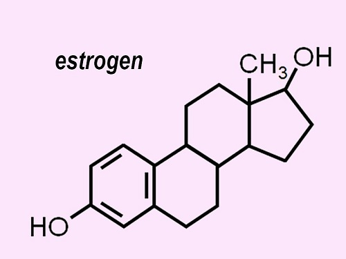 Эстроген у мужчины.